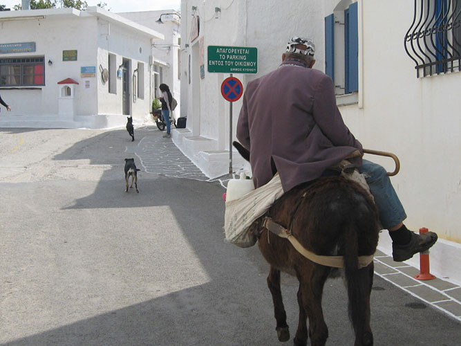 Farmer on his way to centre of Hora on mule